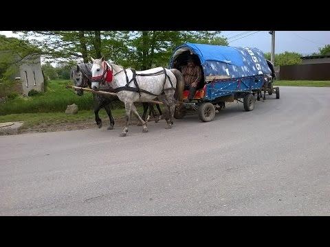 Vintu de Jos, tranzitat de ultimii nomazi din România .