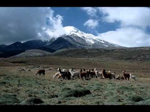 Las Leyes Del Amor (Pasacalle)-ECUADOR - YouTube