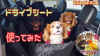 こちらのサイトでクーポンでさらに安くなるようです。 http://winsun.jp...