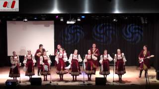 Фольклёрно-эстрадный ансамбль