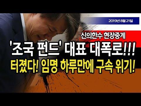 (현장중계) '조국 펀드 의혹' 웰스씨앤티 대표 대폭로!!! 임명 하루만에 구속 위기!!! / 신의한수 19.09.10