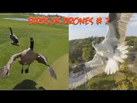 Top 5 Angry Birds vs Drones # 2
