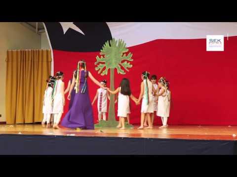 Taller de Danza -  La Araucaria