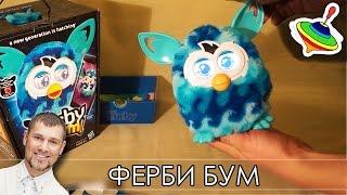 видео Сонник: сова, летающая сова, белая сова, сова серая. Толкование сна сова
