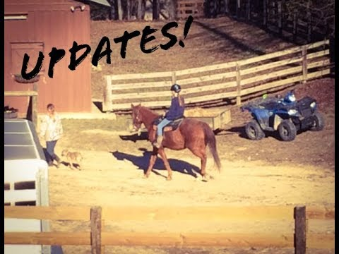 Update Video: Homeschool & Riding Lessons