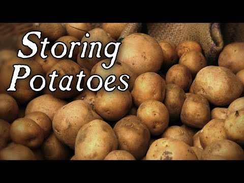 Long Term Potato Storage - Q&A
