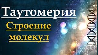 Таутомерия. Органическая химия.