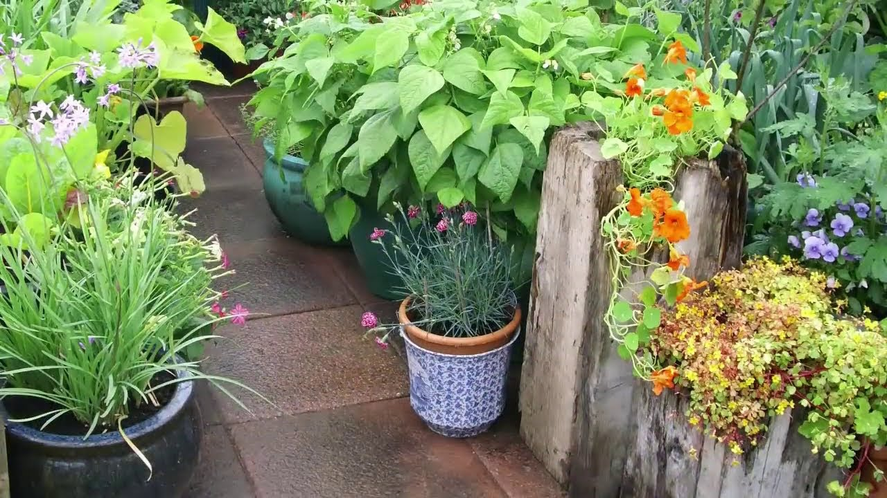 5 Golden Rules of Garden Planning - YouTube on Backyard Layout Planner id=77140