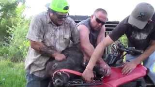 Episode 1  Swine Flu Vaccine... South Texas Hog Hunting