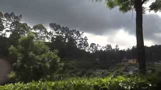 Tea Factory and Tea  Estate, Munnar