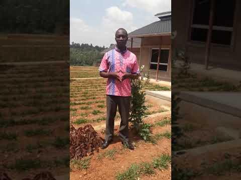 Simeon, the Kijana Global Innovation School Principal