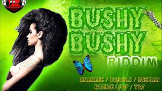 BUSHY BUSHY RIDDIM MIXX BY DJ-M.o.M RICHIE LOOP, TOI, ICECOLD, ICEMAN, ANARAHK and more