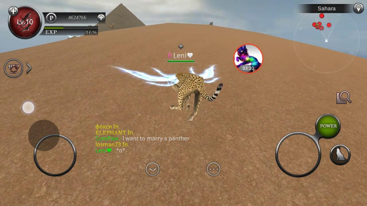 Wild animals online mod testing :3 #1