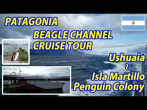 BEAGLE CHANNEL CRUISE TOUR Ushuaia → Estancia Harberton and Isla Martillo Penguin Colony