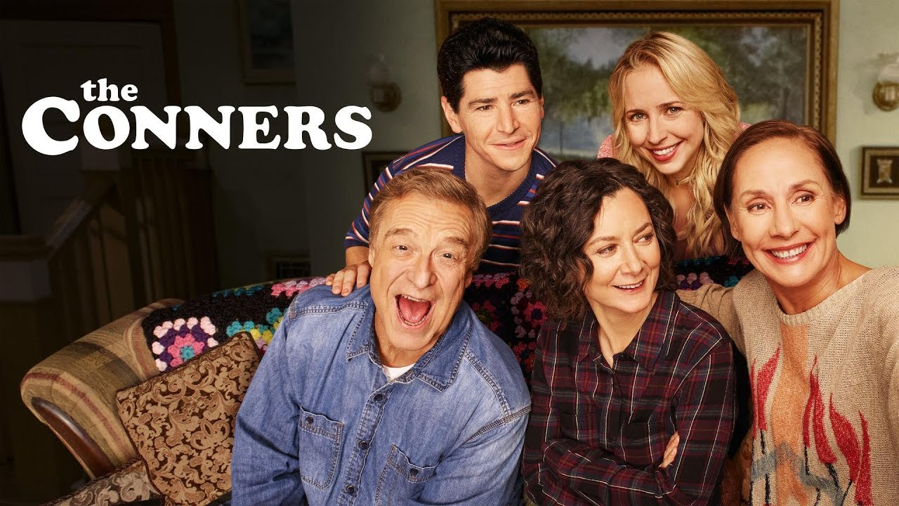 Image result for the conners