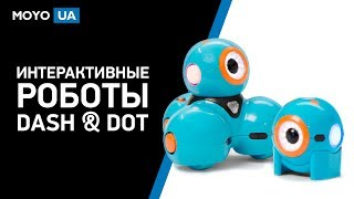 Обзор интерактивных роботов WonderWorkshop Dash&Dot