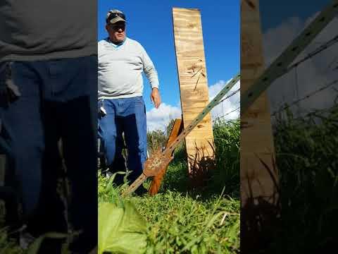 Umarex Gauntlet 22 caliber penetration test a half inch plywood board