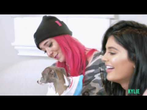 Kylie Jenner and Jenna Marbles read mean dog tweets (FULL APP VIDEO)