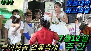 💗버드리💗 7월12일 주간 2018 부여 서동 연꽃축제 초청공연