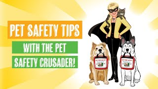 Pet Safety Tips with the Pet Safety Crusader