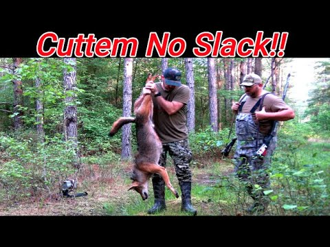 Cuttem No Slack! 3 Shotgun Kills! He woofed at us! Coyote Hunting S9:E33