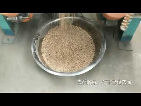 Suction Type Gravity Destoner Machine White Pepper Seed Cleaning Equipment