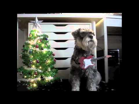 ZZ Top dog - Happy Christmas