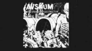 AVSKUM - Punks Don