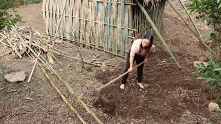 【南方小蓉】雲南女子隱居深山 在自建叢林屋後開荒種蔬菜 過著自給自足的生活