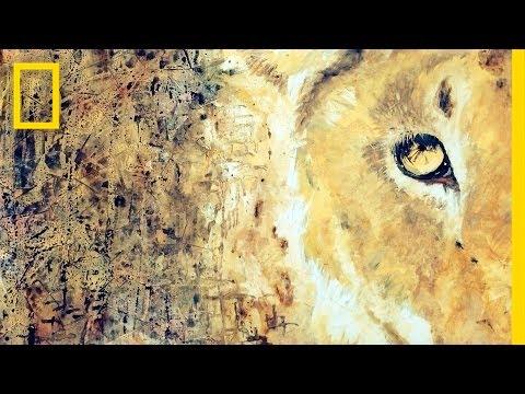 Art of the Matter | Nat Geo Live