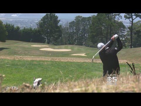 El Cerrito Golf Club Embraces Berkeley Identity