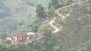 Клещ атакует плантации колумбийского кофе(, 2012-09-07T16:23:33.000Z)