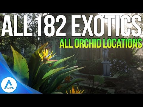 All 182 Exotic Item locations: All Orchids, Eggs & Birds - Red Dead Redemption 2 thumbnail