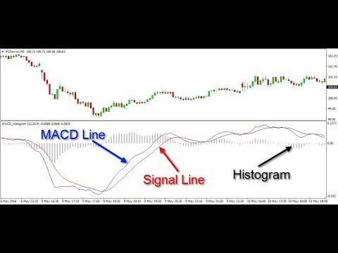 Exploring MACD - A Great Indicator for Forex and Crypto Trading