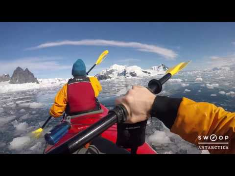6 things to do in Antarctica