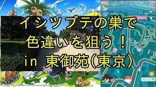 【ポケモンGO】東御苑(イシツブテの巣)で色違いを狙う! thumbnail
