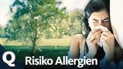 Allergie – Darum rebelliert unser Immunsystem (Ganze Folge) | Quarks