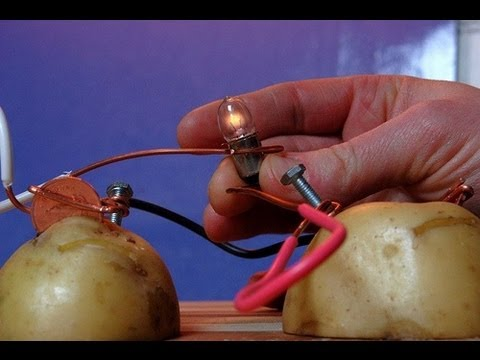 What Do I Need For A Potato Light Bulb Experiment 43