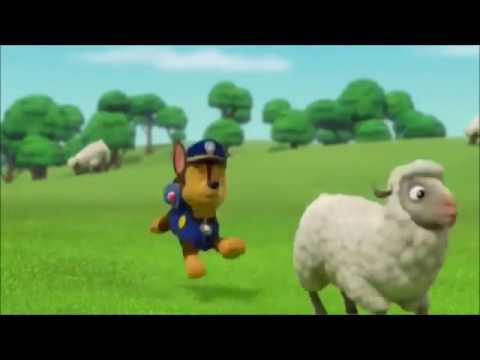 Paw patrol Chase and Sylvia LOVE - YouTube