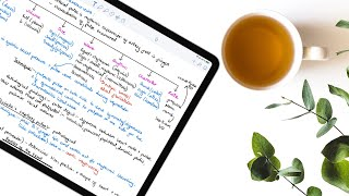 DIGITAL NOTE TAKING 101: A BEGINNER'S guide to taking DIGITAL STUDY notes