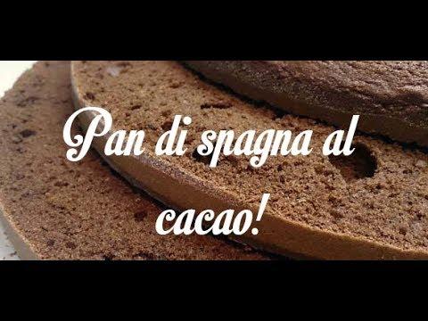 Ricetta Pan Di Spagna Al Cacao Di Benedetta.Pan Di Spagna Al Cacao Alto E Soffice 4 Uova Youtube