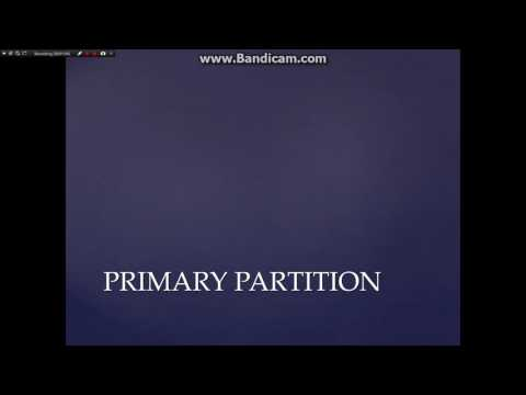 PRIMARY vs EXTENDED vs LOGICAL Partition