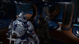 warframe random things/meeting nev and her porn story.