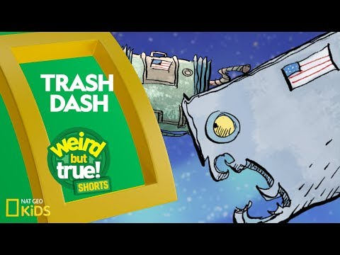 Trash Dash | Weird But True! Shorts