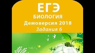 Задания 6 Демовариант 2018 ЕГЭ по биологии
