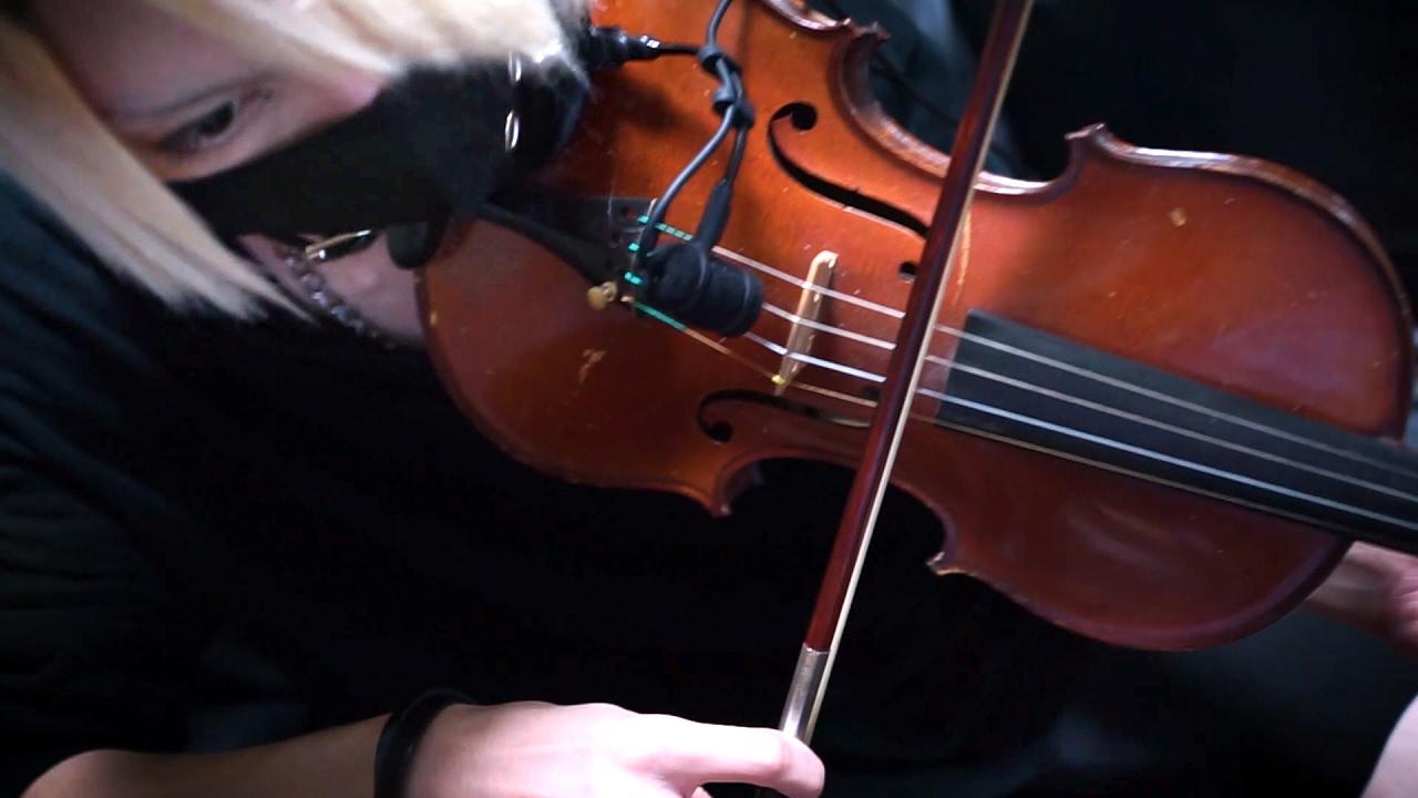 【シャドウバース】エルフ(アリサ)BGM ヴァイオリンで弾いてみた