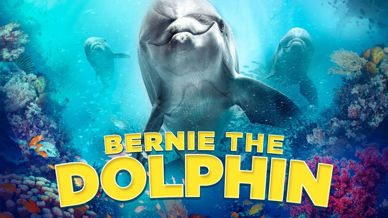 Splendid Film Bernie De Dolfijn