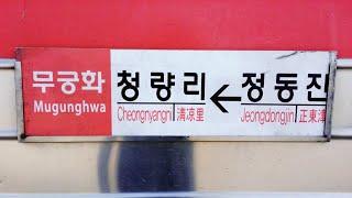 [무궁화호] 정동진발 청량리행 16배속 후부영상, (16x) Korean Mugunghwa Train Driving Video in Gangwon Province.