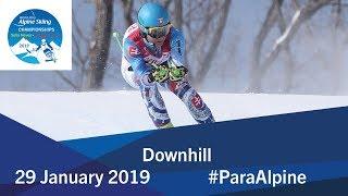 Downhill   2019 World Para Alpine Skiing World Championships