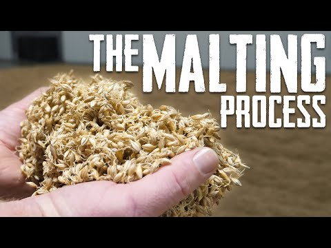 Beer And Whiskey Malt - How It's Made - Riverbend Malt House Tour